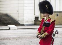 предохранитель королевский Стоковые Изображения RF
