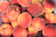 Предпосылка персика Стоковое фото RF