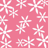 Предпосылка пинка картины белого цветка Стоковое Фото