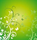 Предпосылка цветка лета Стоковая Фотография