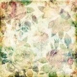 Предпосылка Grungy ботанических роз сбора винограда затрапезная Стоковые Фото