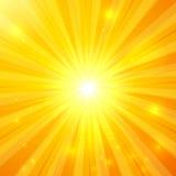 Предпосылка абстрактного желтого вектора солнечная Стоковая Фотография RF