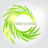 Предпосылка акварели вектора бамбуковая с зеленым цветом Стоковое Изображение