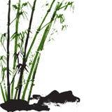 Предпосылка акварели с бамбуком и камнями Белая предпосылка Вектор запаса Стоковая Фотография