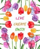 Предпосылка акварели флористическая live создайтесь насладитесь Мотивационное высказывание иллюстрация штока