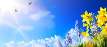 Предпосылка ландшафта весны с свежими цветками весны стоковое изображение rf