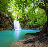 Предпосылка ландшафта водопада красивейшая природа стоковое фото rf