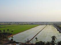 Предпосылка ландшафта облака голубого неба зеленой травы поля риса пасмурная стоковые изображения