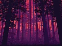 Предпосылка ландшафта с глубоким лесом Стоковые Фотографии RF