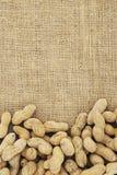 Предпосылка арахиса стоковое изображение rf