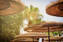 Предпосылка бамбукового зонтика пляжа Тропическая принципиальная схема праздника Стоковая Фотография RF