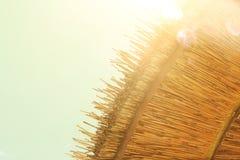 Предпосылка бамбукового зонтика пляжа Тропическая принципиальная схема праздника Стоковые Изображения RF