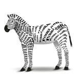 Предпосылка белизны зебры Стоковое фото RF