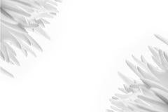 Предпосылка белого цветка Стоковое Изображение RF