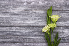 Предпосылка белых цветков серая деревянная красный цвет поднял венчание карточка 2007 приветствуя счастливое Новый Год День женщи Стоковые Изображения RF