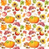 Предпосылка благодарения безшовная Плодоовощи, овощи - тыква, листья осени акварель Стоковое Фото