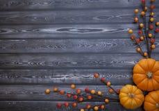 Предпосылка благодарения осени Стоковые Фото