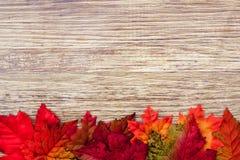 Предпосылка благодарения осени Стоковая Фотография RF