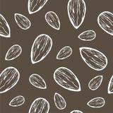 Предпосылка вектора безшовная с сизоватым кактусом Стоковые Изображения RF
