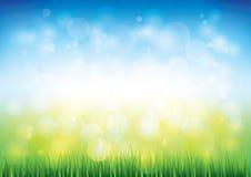 Предпосылка вектора голубого неба и травы Стоковые Фотографии RF
