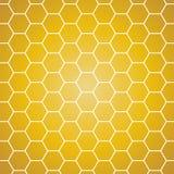 Предпосылка вектора Желтый и оранжевый сот Стоковые Фото