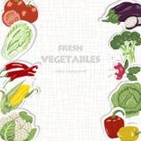 Предпосылка вектора с овощами Стоковое Изображение
