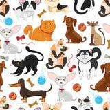 Предпосылка вектора любимчика Картина собак и кошек безшовная иллюстрация вектора