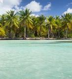 Предпосылка вертикали острова Saona Стоковые Изображения