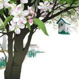 Предпосылка весны - зацветая яблоня с Birdhouse Стоковая Фотография RF