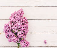 Предпосылка весны с букетом цветков сирени на белых деревянных планках Стоковое Изображение RF
