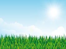Предпосылка весны с текстурой травы и солнце на облачном небе иллюстрация штока