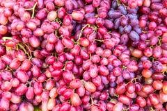 Предпосылка вина виноградины Стоковые Фотографии RF
