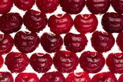 Предпосылка вишни Зрелые свежие лоснистые богатые вишни на белой предпосылке Стоковое Изображение RF