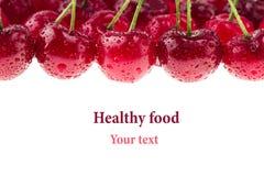 Предпосылка вишни Пуки зрелых сочных богатых сияющих вишен на белой предпосылке Стоковое Изображение RF