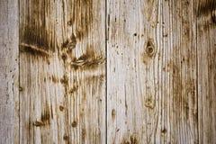 предпосылка всходит на борт старое деревянного Стоковые Фотографии RF
