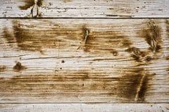 предпосылка всходит на борт старое деревянного Стоковая Фотография