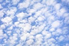 Предпосылка высоких ледистых облаков против голубого неба Стоковое Изображение