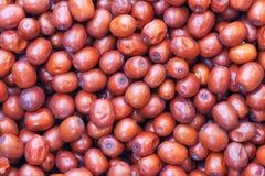 Одичалые jujubes Стоковое фото RF