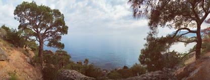 Предпосылка горы утеса сосны моря панорамы Стоковое Фото