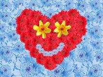 Предпосылка голубой маргаритки с сердцем влюбленности цветка Стоковые Изображения RF