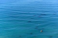 Предпосылка голубой поверхности моря стоковое изображение rf