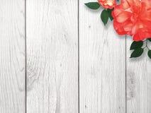 Предпосылка границы голубого и белого цветка Стоковая Фотография