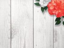 Предпосылка границы красного и белого цветка Стоковые Изображения RF