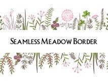 Предпосылка границ трав луга безшовная Иллюстрация для плакатов, поздравительных открыток, и других проектов печатания Стоковые Изображения RF