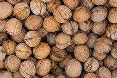 Предпосылка грецких орехов стоковое изображение rf