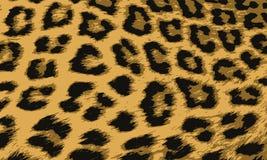 Предпосылка леопарда для вашего дизайна Бесплатная Иллюстрация