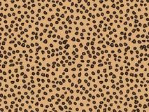 Предпосылка леопарда Стоковая Фотография