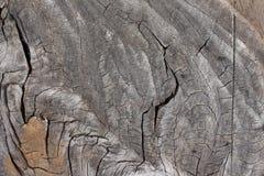Предпосылка деревянного Стоковые Фото