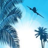 Предпосылка лета с ладонями и самолетом Стоковые Изображения RF
