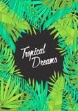 Предпосылка лета с тропическими листьями, monstera, chamaedorea, бананом и другими ладонями Шаблон для плаката, плаката Стоковое Фото